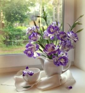 цветы в белом чайнике