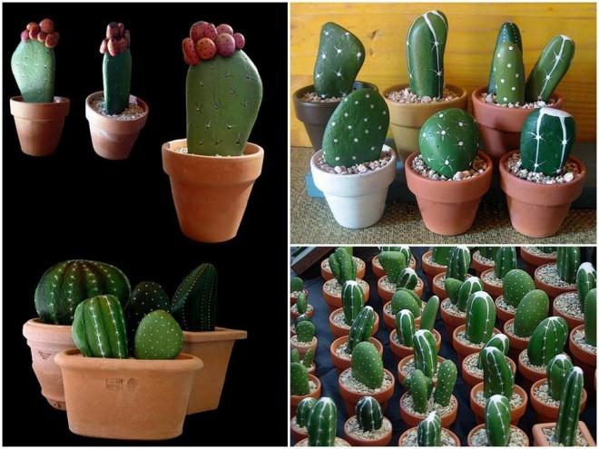Коллаж фотографий кактусов из камней