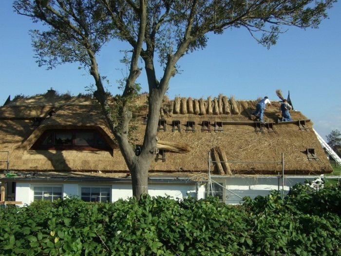 два мастера, укладывающие соломенную крышу