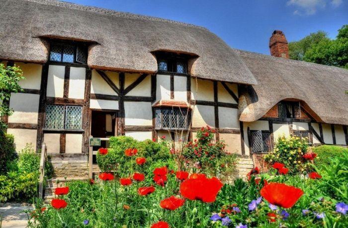 дом с соломенной крышей и цветы