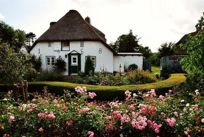 дом с соломенной крышей и розы