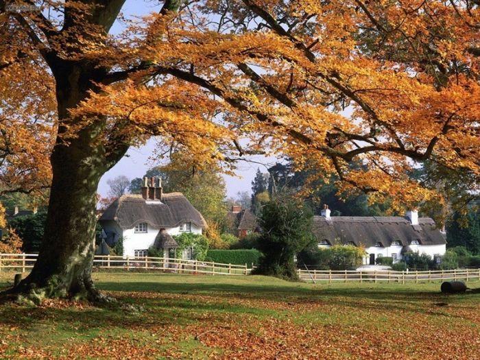 осень в английской деревне