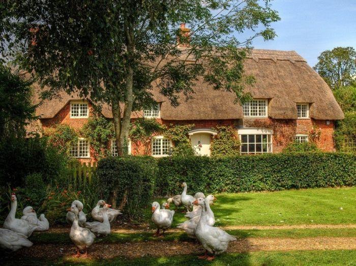 двухэтажный английский домик с соломенной крышей и гуси