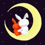 Два зайчика на луне
