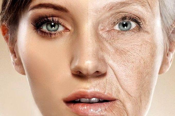 лицо в старости и молодости